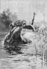 Bunyip_1890