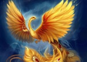 phoenix-2.jpg